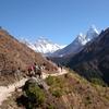 Sherpa Journeys