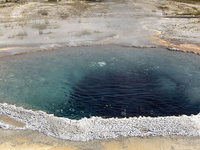 Shield Geyser