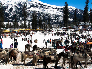 5 Nights / 6 Days Shimla Manali Packages Just in 9999/- PP Photos
