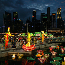 Singapore Skyline With Flowers