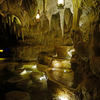 Singapore Zoological Gardens, Night Safari
