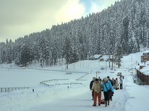 Gulmarg Ski Package Photos