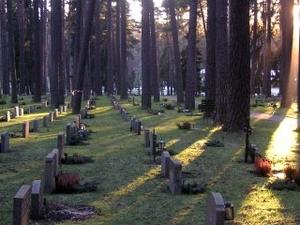 Skogskyrkogarden