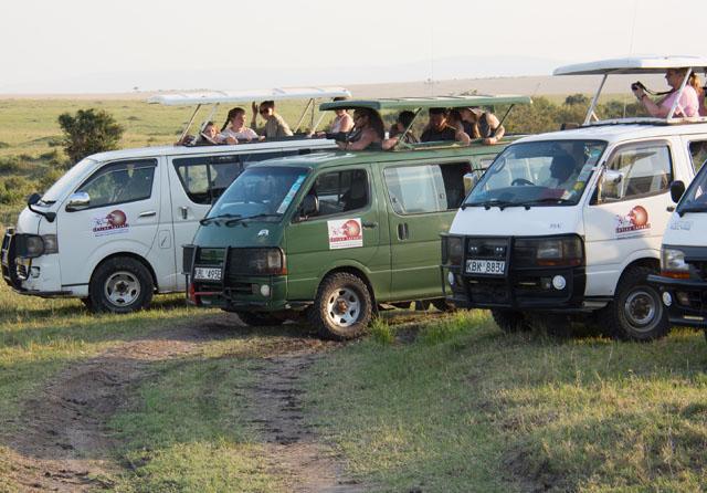 Masai Mara Group Safari with Daily Departures Photos