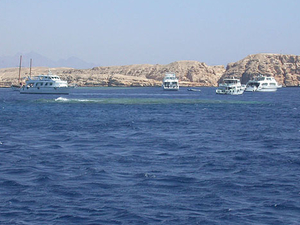 Sharm el Sheikh Shore Excursion: Red Sea Cruise and Snorkeling at Ras Mohamed National Park Photos
