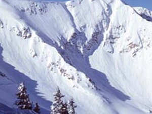 Snowbird Ski & Summer Resort