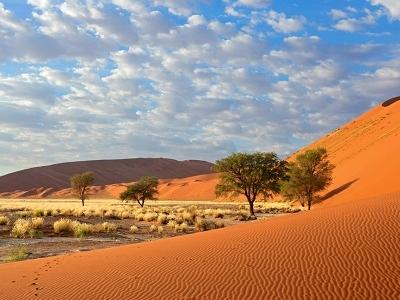 Sossusvlei Landscape - Namib Desert
