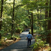 South Arkansas Arboretum