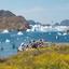 South Greenland