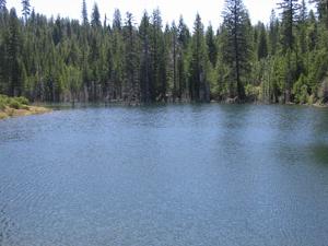 Spalding Pond Campground