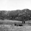 Specimen Ridge Trail - Yellowstone - USA