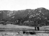 Specimen Ridge Trail