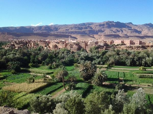 Marrakech – Desert Merzouga, Erg Chebbi 3 Days Photos