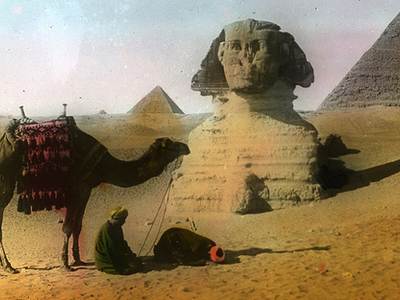 Sphinx - Camel & Pyramids At Giza