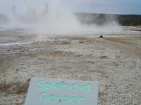 Splendid Geyser