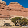 Squaw Canyon - Lost Canyon Trail - Canyonlands - Utah - USA