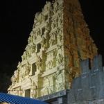 Sri Bhramaramba Mallikarjuna Temple