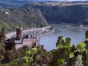Rhine Gorge
