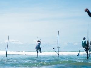 Beach Please!!! Sri Lanka Photos