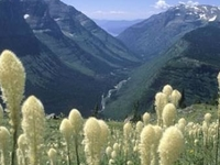 St Mary-Glacier Park Koa