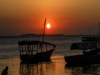 Sunset Dhow Cruise (2Hrs)