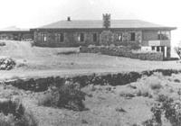 Stone Tree House
