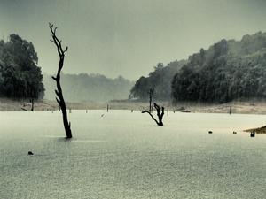 Beautiful Kerala 5n/6d packages Photos