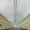 Structure Of Shukhov's Roof