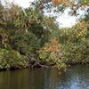 St. Sebastian River Preserve State Park