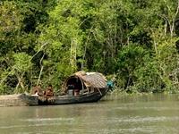 Sundarbans River Launches