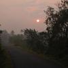 Sunrise At Bondla