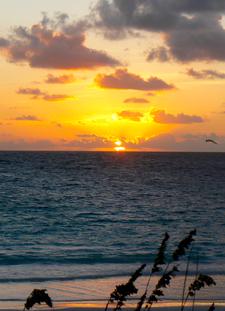 Sun Rise - Harbour Island