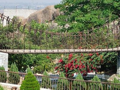 Suspension Bridge, Rock Garden