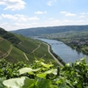 Moselle River