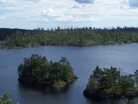Tyresta National Park