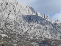 Velebit