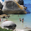 Swimmers At Boulders Beach