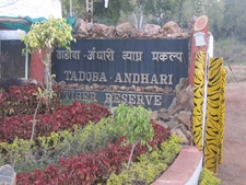 Tadoba Reserve Entrance Sign-Post