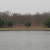 Tadoba Lake