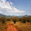 Taita Hills