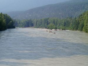 Taiya River