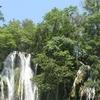 Tamasopo Falls