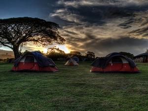 Tanzania Budget Camping - 7 days Fotos