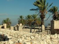 Tel Megiddo