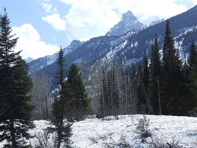 Teton Canyon - Grand Tetons - Wyoming - USA