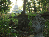Thai Travels Asia
