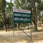 The Baghira Log Huts