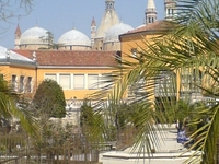 Orto Botanico Di Padova