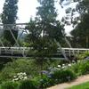 The Brisbane Bridge Over The Yarra River
