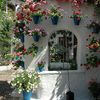 The Courtyards - Cordoba